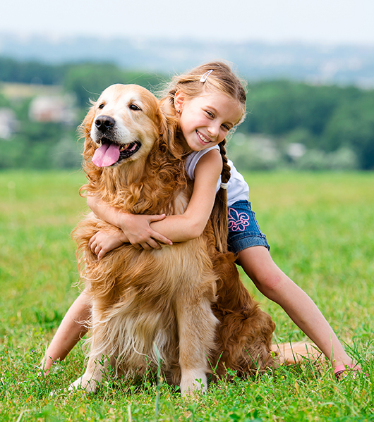 girl hugging golden in field in summer