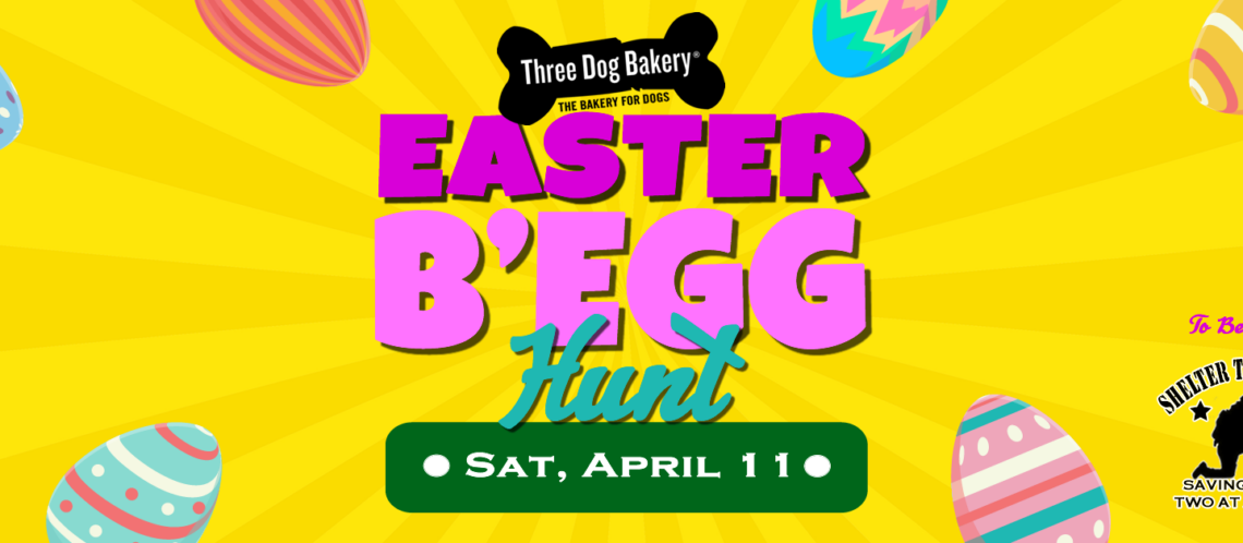Three Dog Bakery Easter Begg Hunt