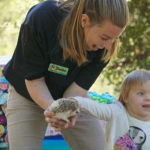 Interaction with hedgehog at animal birthday party