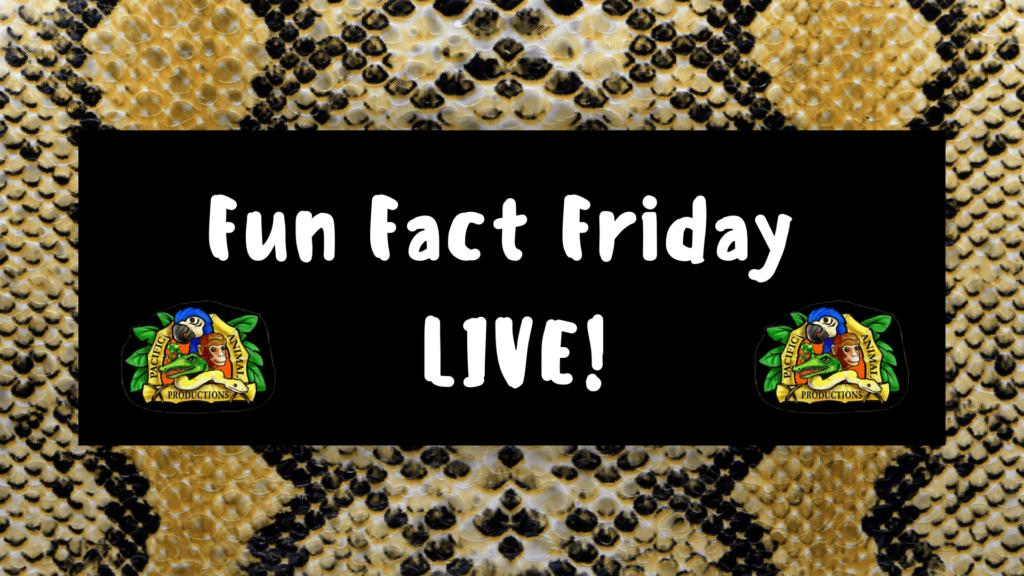 Fun Fact Friday LIVE!