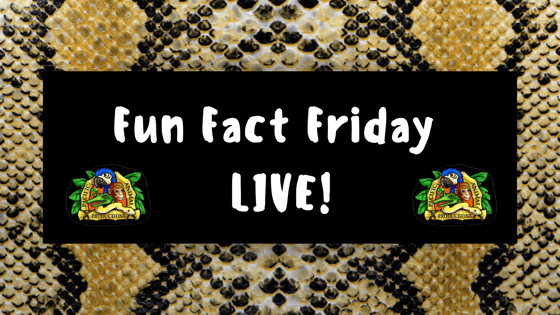 Fun Fact Friday LIVE!-min