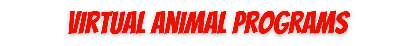 Virtual Animal Programs