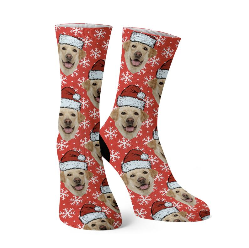 socks with pet photo