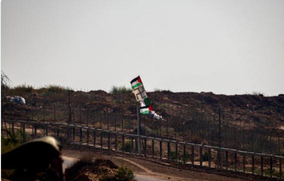 Swastika flag raised at weekly Gaza protests