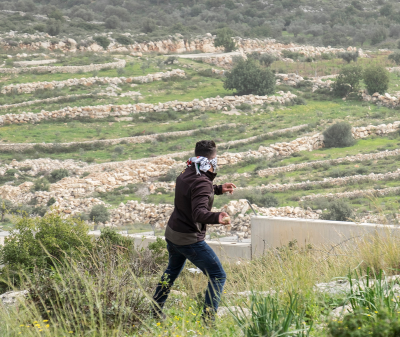 arab throwing rocks at Jewish cars in Judea and Samaria