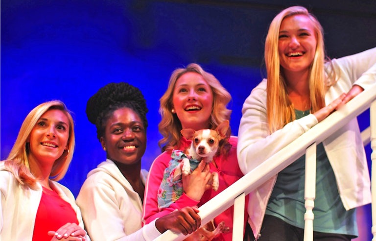 Legally Blonde the Musical opens July 29 at Norwell's Company Theatre
