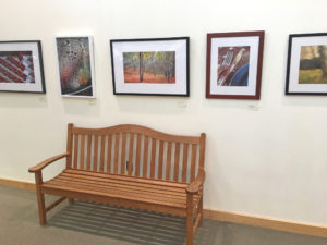 Read more about the article REVIEW: South Shore Conservatory's fascinating art exhibition, 'South Shore Photographers'