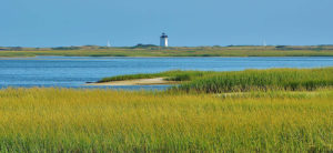 Read more about the article Provincetown 400 Presents First Community Launch Event