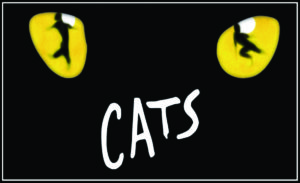 Read more about the article The Academy of The Company Theatre and Teen Conservatory Announce Auditions for CATS