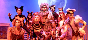 Through the Lens:  The Company Theatre's CATS