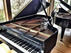 Read more about the article Cape Cod Chamber Music Festival Presents The Piano Bash