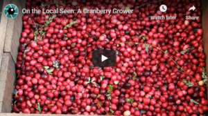 This is Who We Are: A Cranberry Grower