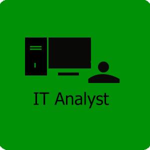 IT Analyst service