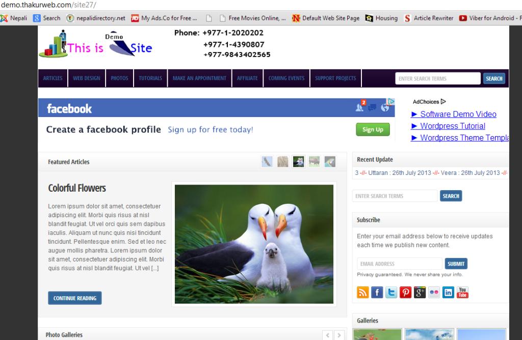 Glimpse of demo website