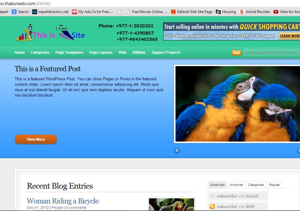 View of demo website