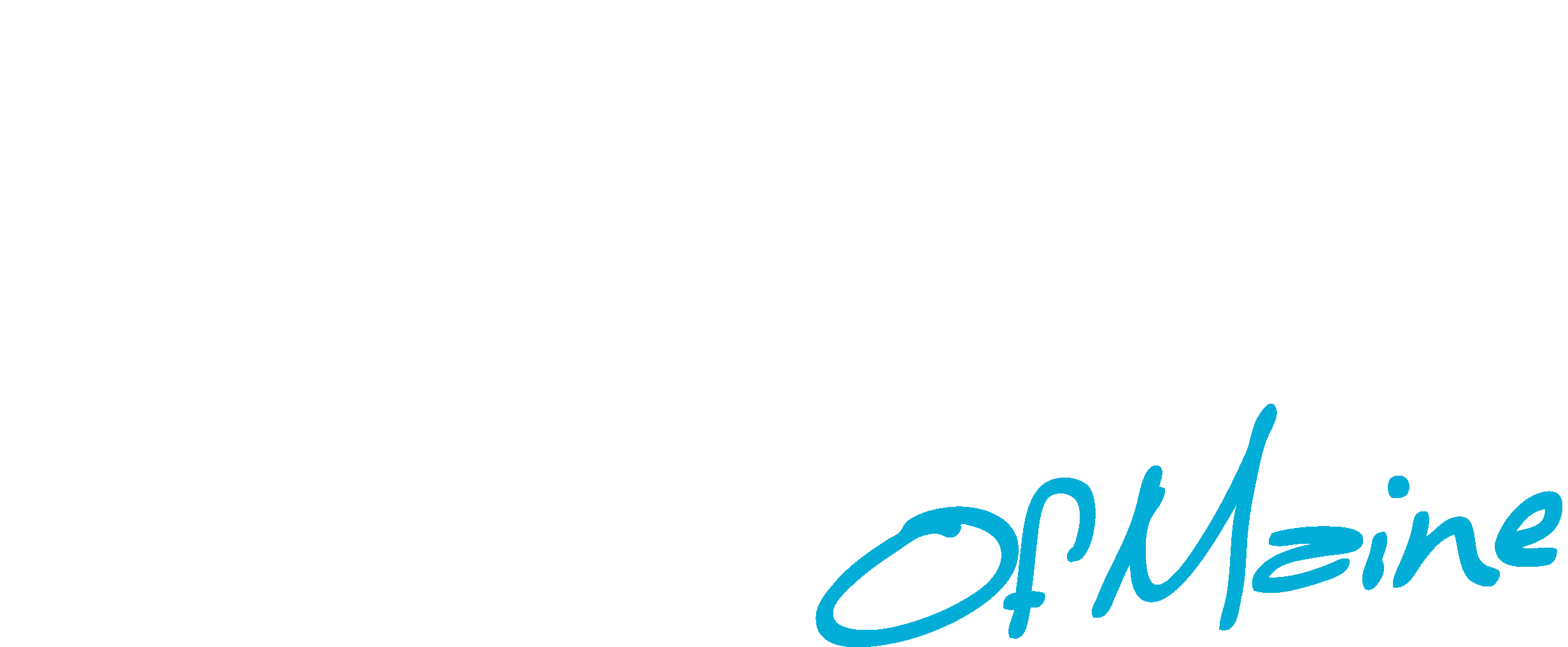 Production Services of Maine