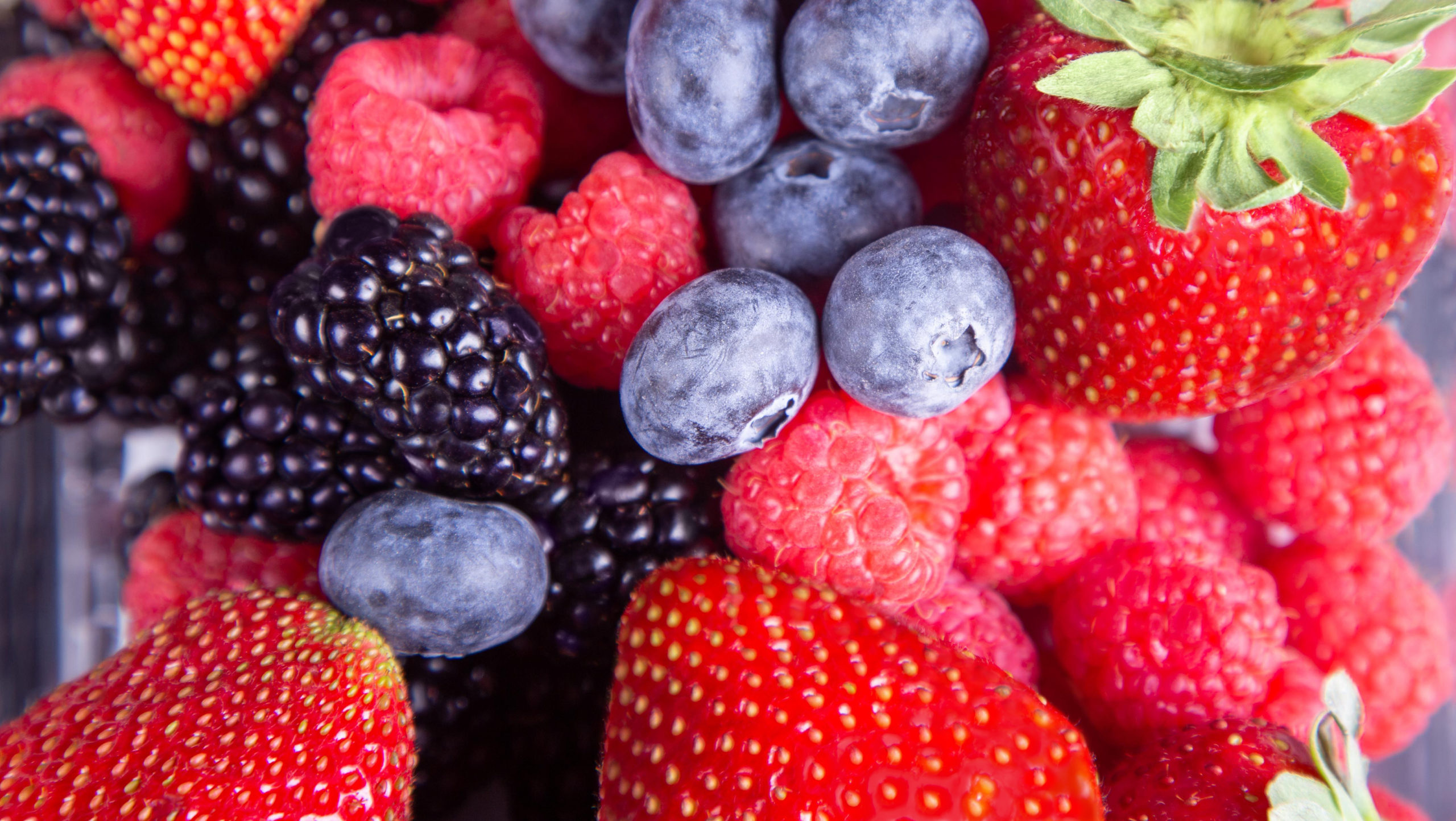 Fresh Results combination berries: strawberries, raspberries, blueberries, and blackberries