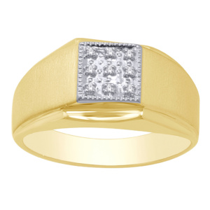 10K 0.03CT D-RING MENS RDS