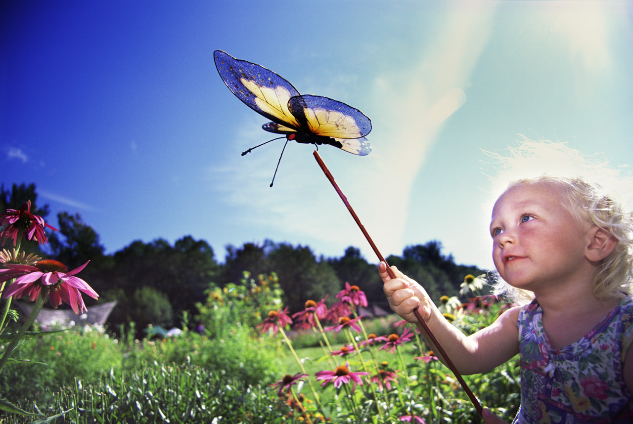 Summer Fun – Free Activities For Kids, Families And Adults