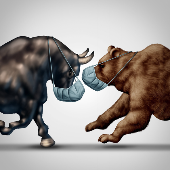 A COVID-19 Bull Market in a Bear Market Environment