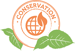 Conservation element icon