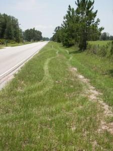 vehicle tracking man-tracking mantracking shine tire tracks grass