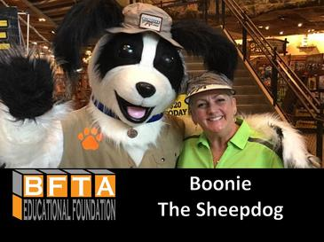 An image of Boonie The Sheepdog