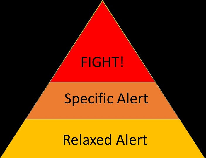 A pyramid showing how to respond