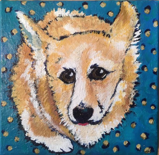Russell, a golden Corgi pup