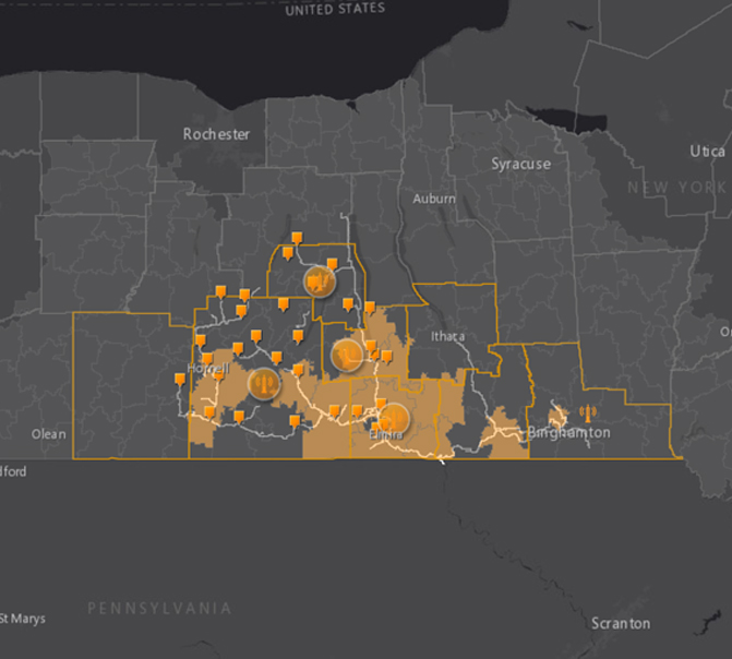 regional demographics of southern tier network