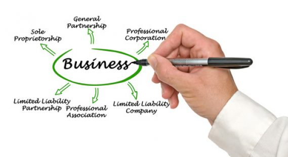 Advantages and Disadvantages of Limited Liability Company