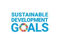 E_SDG_logo.png - Copy