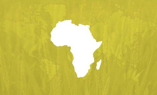 Oro Agri Sub Sahara Africa Header
