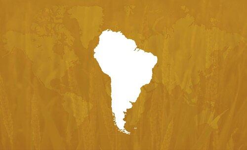 Oro Agri Brazil Header