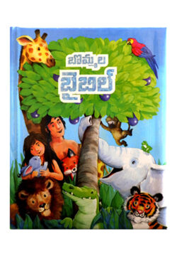 The Picture Bible [Telugu]