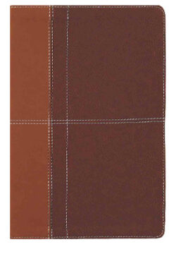 NIV Life Application Study Bible – Leathersoft, Tan/Brown