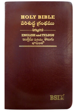 Bilingual Parallel Bible English-Telugu KBS
