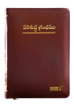 Holy Bible Telugu KBS zip index burgundy
