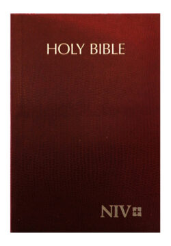 NIV Holy Bible Compact, Brown (PB)