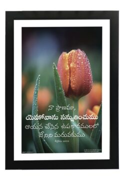 Bless the Lord Ps 103.2 (Telugu)