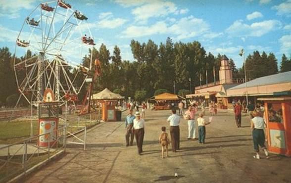 Circa 1950's