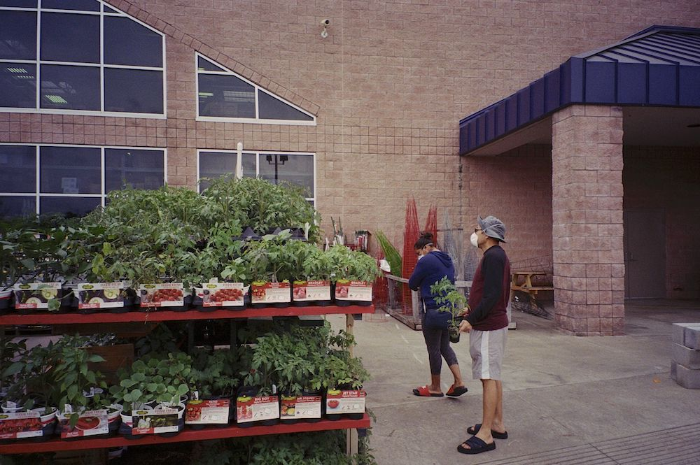 cody-swann-photo-128-lowes-garden-center