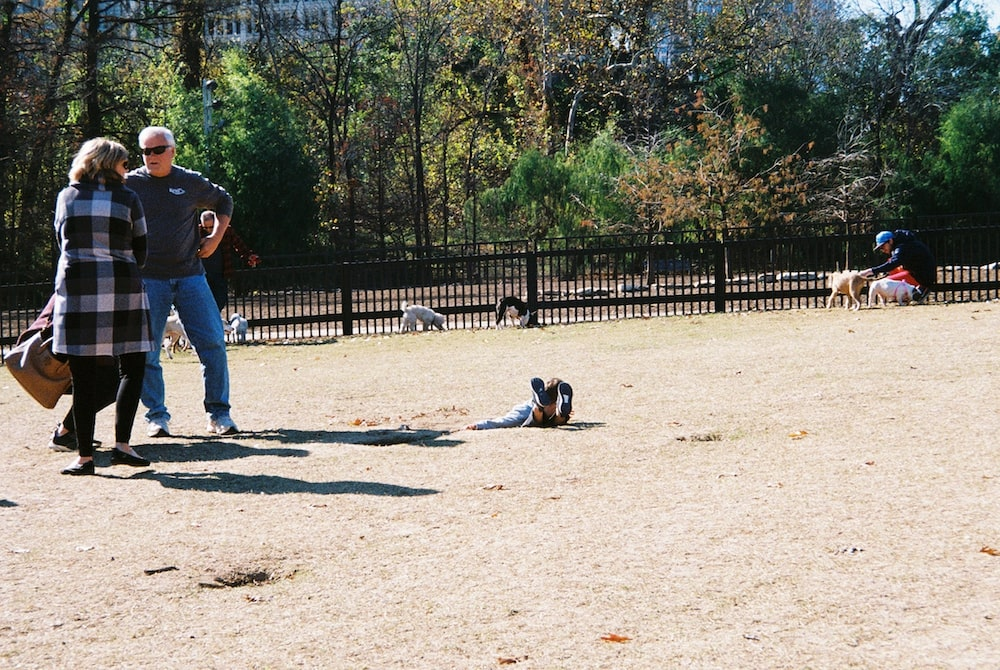 cody-swann-photo-47-dog-park-parenting
