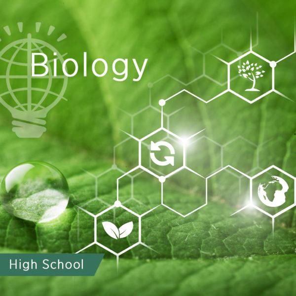 leaf witswmbolsh biology