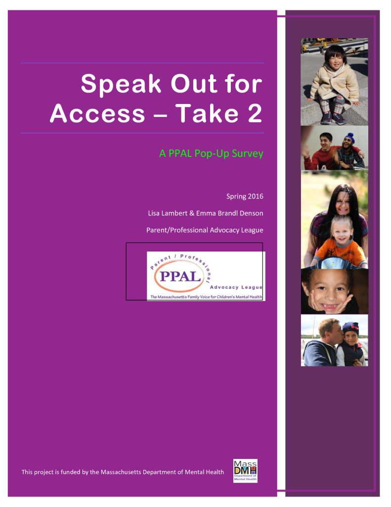 Speak Out for Access — Take 2