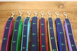 Block Island Dog Collars