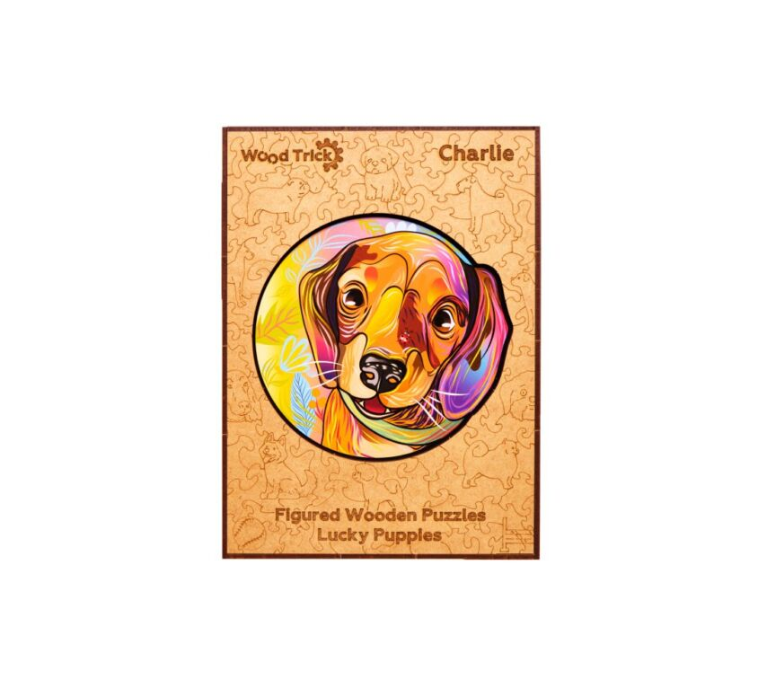 Lucky puppies: Charlie