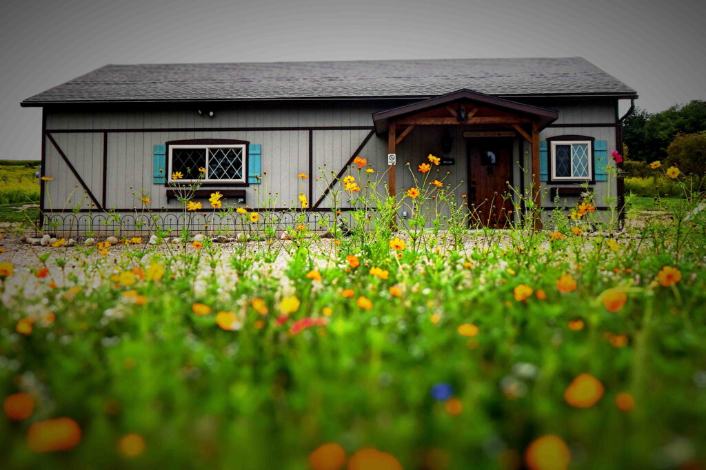 An exterior view of Dragonfyre Distillery looking at it from the wild flowers growing in front of the parking lot.