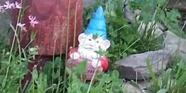 Chompsky the Gnome in front of a mushroom near the Hobbit door of Dragonfyre Distillery.