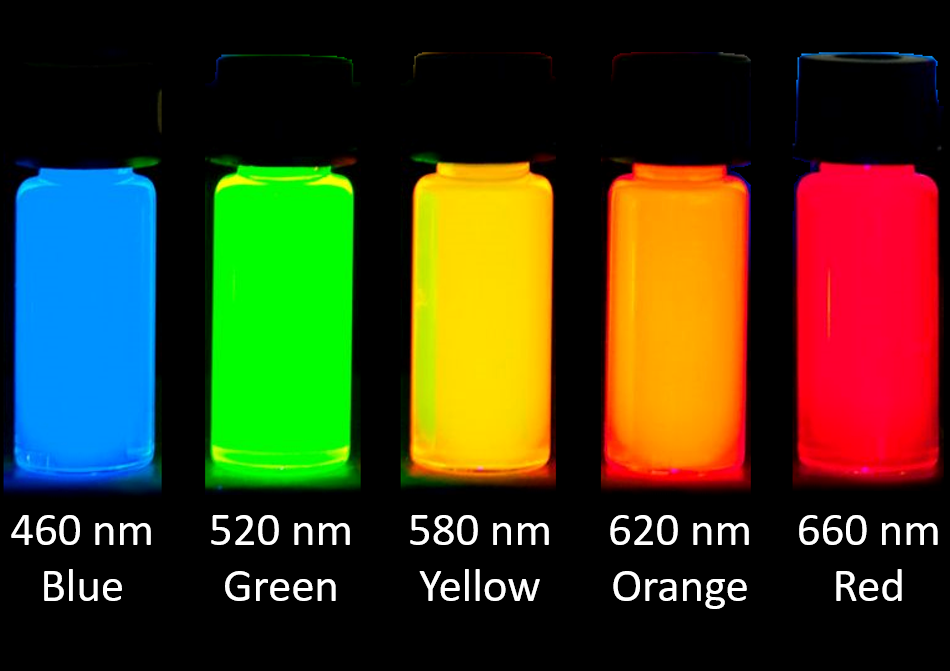 Quantum dots fluorescent nanoparticles of different sizes and colours